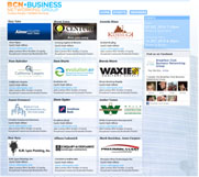 BCN Business Networking Group Web Site Design, Roseville Sacramento
